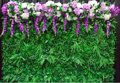Greenery Wall with Lilacs